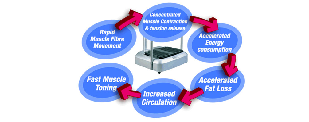 Buy Online Vibration Plates from Powermax Fitness